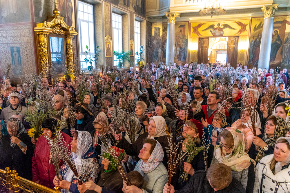http://beleparh.ru/images/gallery/3186/DSC_3865.jpg